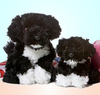Stuffed Portuguese Water Dog