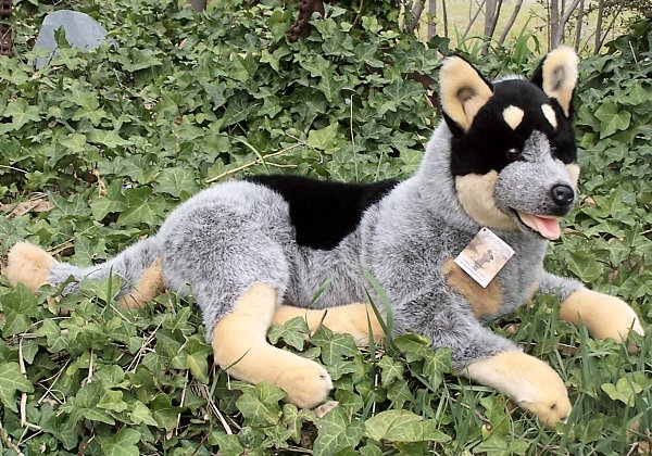 stuffed toys - Stuffed Cattle Dog - Dogs