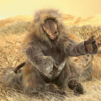 stuffed toys - Stuffed Baboon - Monkeys