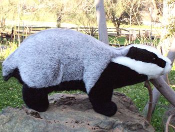 Stuffed Badger