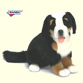 stuffed toys - Stuffed Sennenhund - Dogs
