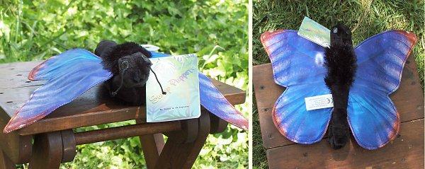 stuffed toys - Stuffed Blue Morpho Butterfly - Bugs