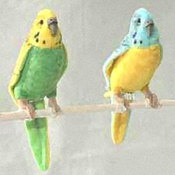 Stuffed Yellow Budgerigar - Yellow Budgerigar Birds