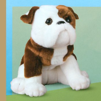 Hardy the Stuffed English Bulldog