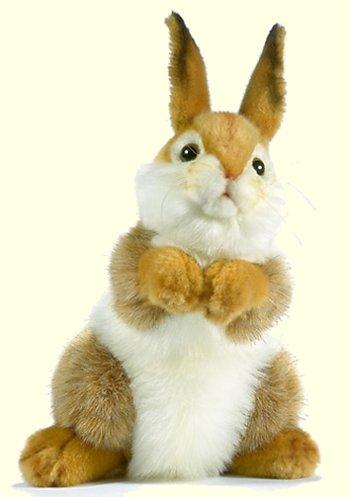 stuffed toys - Stuffed Bunny - Bunny Rabbits