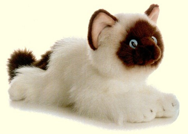 Aurora Lifelike Stuffed Plush Birman Kitten