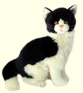 Stuffed European Cat