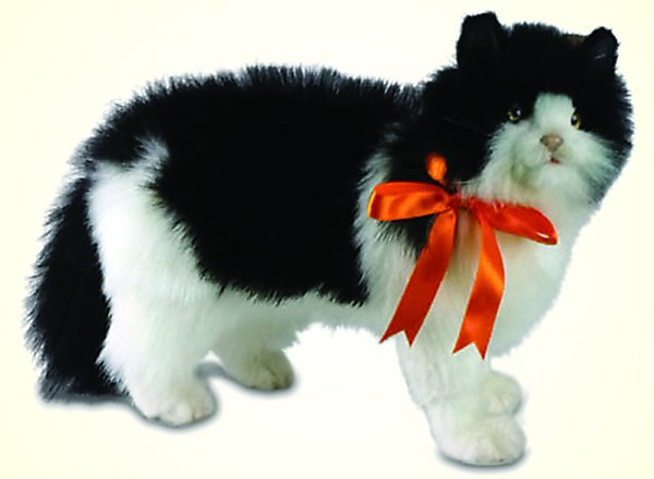stuffed toys - Stuffed Black and White Cat - Domestic Cats