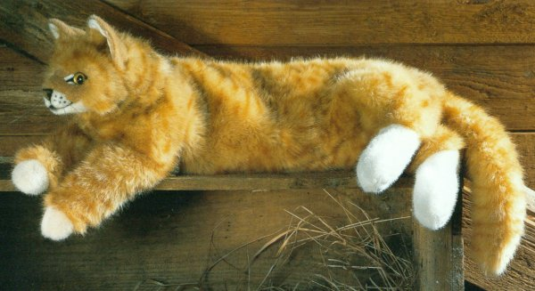 Stuffed Ginger Cat
