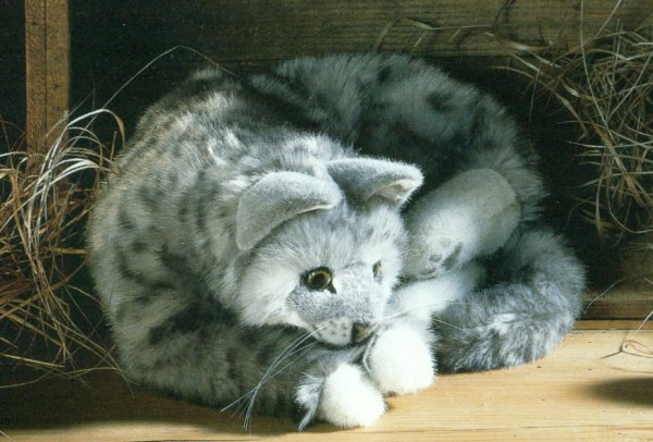 Stuffed Grey Tabby Cat