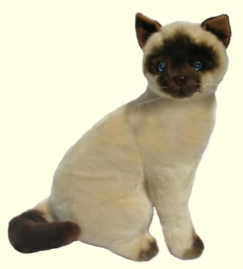 Stuffed Siamese Cat