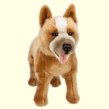 Jessie the Stuffed Australian Red Cattle Dog