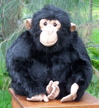 Stuffed Plush Chimpanzee