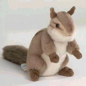 Stuffed Chipmunk