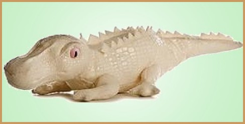 Stuffed-Albino-Crocodile