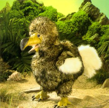 Stuffed Dodo Bird
