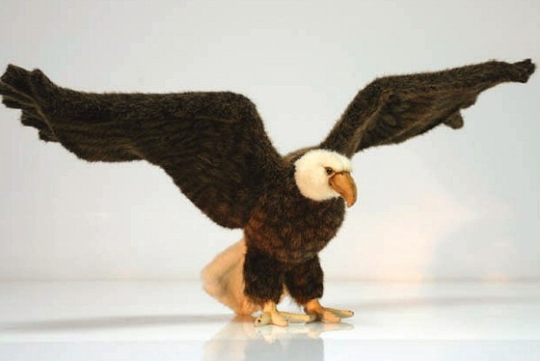 Stuffed Eagle