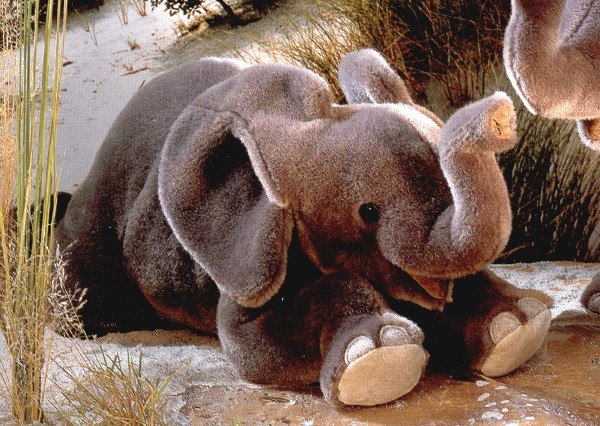 Stuffed Baby Elephant