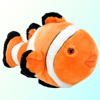 Stuffed-Clown-Fish