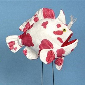 Stuffed-Spittlure-Frogfish