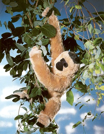 Stuffed Gibbon
