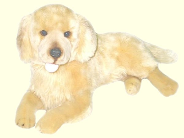 Lucky the Stuffed Golden Retriever