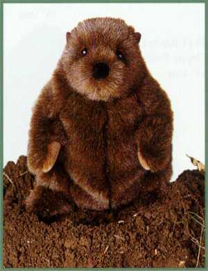 Stuffed Groundhog