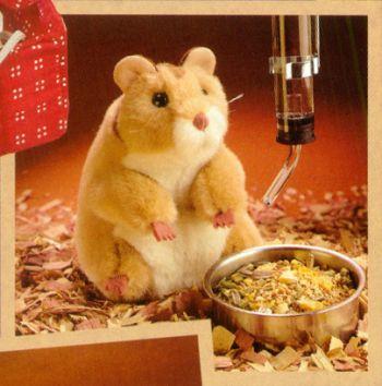 hamsterfm.jpg