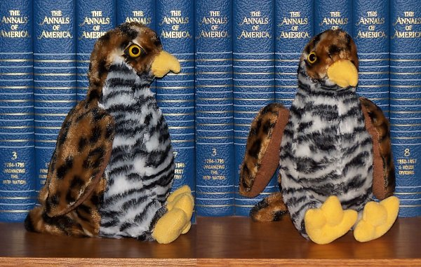 stuffed toys - Stuffed Hawk - Birds