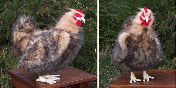 Hansa Stuffed Plush Araucana Hen