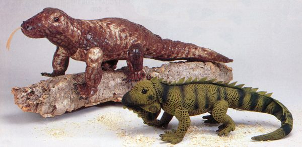 Stuffed Iguana and Stuffed Komodo Dragon