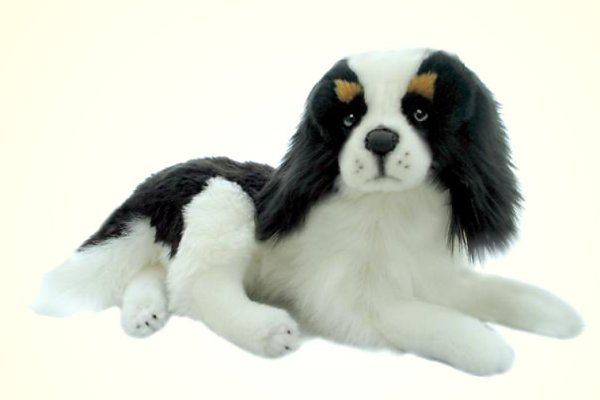 stuffed toys - Stuffed King Charles Cavlier - Dogs