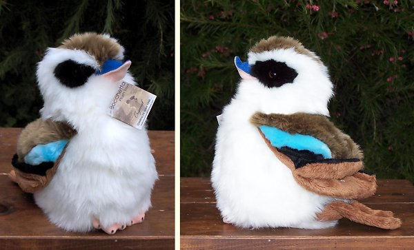 Stuffed Kookaburra