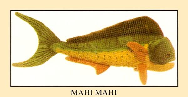 Stuffed Mahi Mahi