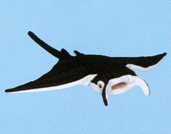 Stuffed-Manta-Ray