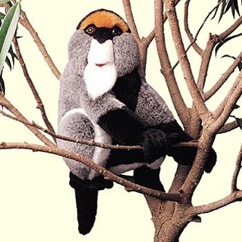 stuffed toys - Stuffed DeBrazza's Monkey - Monkeys