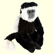 Cuddlekins Colobus Monkey