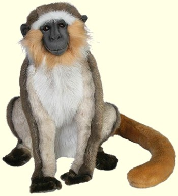 Stuffed Green Vervet Monkey