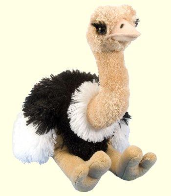 Stuffed-Ostrich