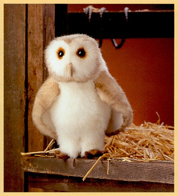 Stuffed Barn Owl