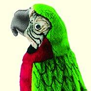 Stuffed Parrot