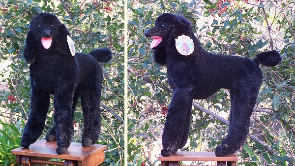 stuffed toys - Stuffed Standard Poodle - Dogs