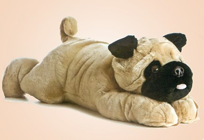List Of Synonyms And Antonyms Of The Word Stuffed Pug