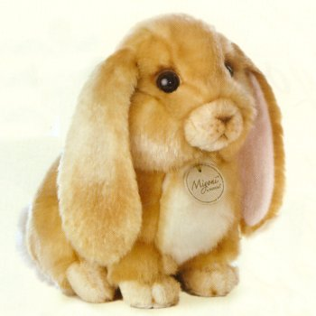 Stuffed Lop Eared Rabbit
