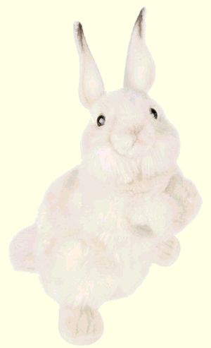 Stuffed Plush White Rabbit
