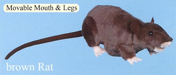 Stuffed Rat