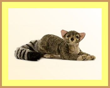 stuffed toys - Stuffed Ringtailed Cat - Domestic Cats