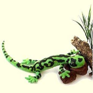 Stuffed-Salamander