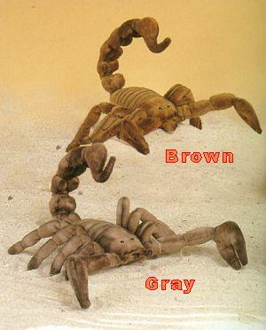 stuffed toys - Stuffed Scorpion - Bugs