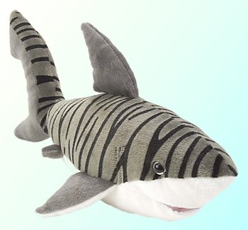 Stuffed-Tiger-Shark